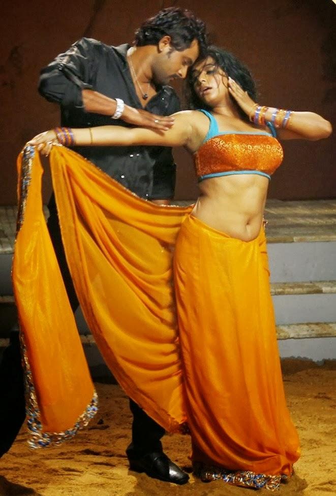 Priyamani Hot Photos In Saree From Tikka Movie  Visit Www -9210